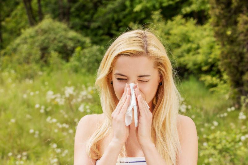 Kalendarz alergika – co ikiedy pyli