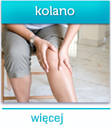 Ortopedia kolana wSalve